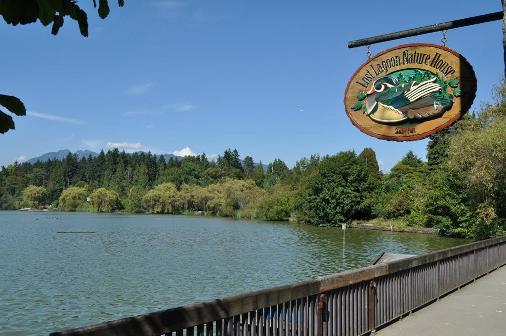 Celebrating Solstice at Stanley Park Nature House on Lost Lagoon