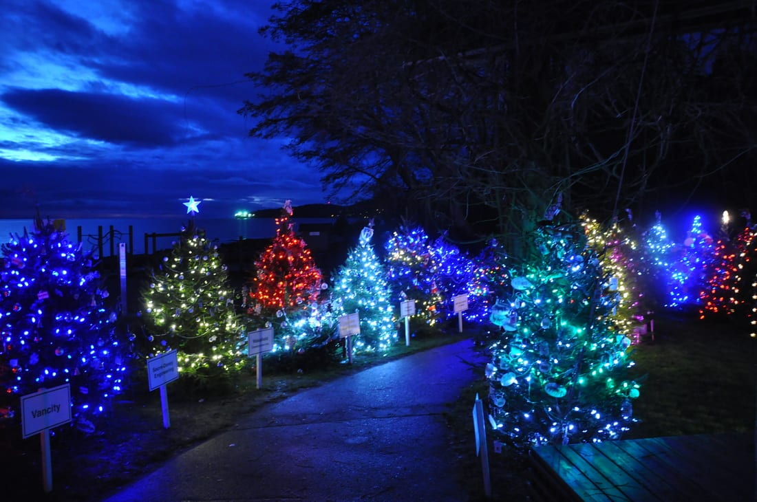 Dundarave Festival of Lights 2015 West Vancouver