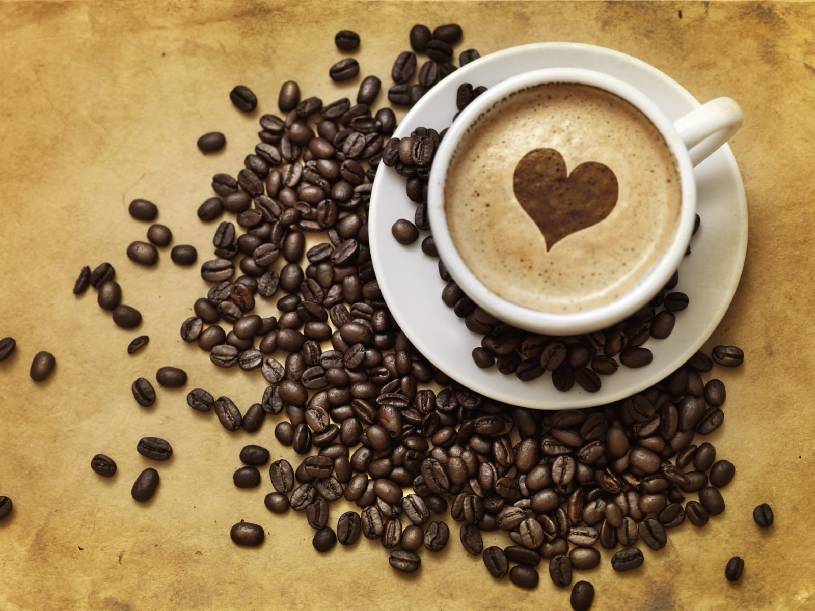 Annual West Van Neighbourhood Alzheimer Coffee Break
