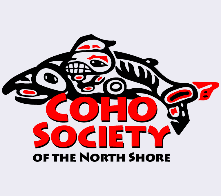 The Coho Festival at Ambleside Park West Vancouver