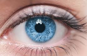 Keeping an Eye on Cataracts