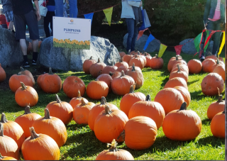 PumpkinFest 2017 at the West Vancouver Community Centre