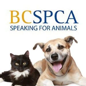West Vancouver SPCA Branch